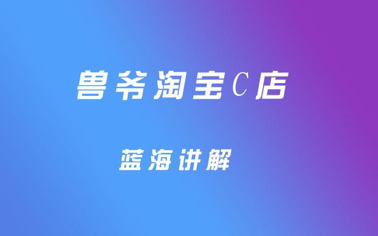兽爷淘宝c店蓝海讲解