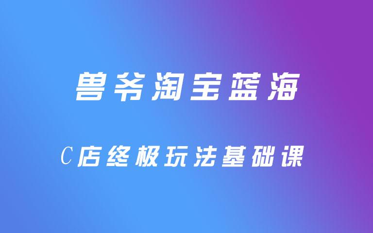 兽爷淘宝蓝海C店终极玩法基础课