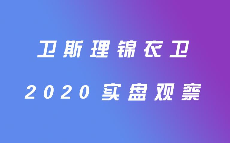 卫斯理锦衣卫2020实盘观察