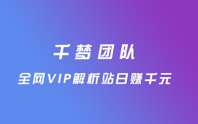 售价3000元的全网VIP解析站日赚千元附源码