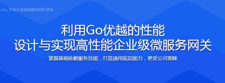 (打造简历项目)Vue+Go 开发企业级微服务网关项目